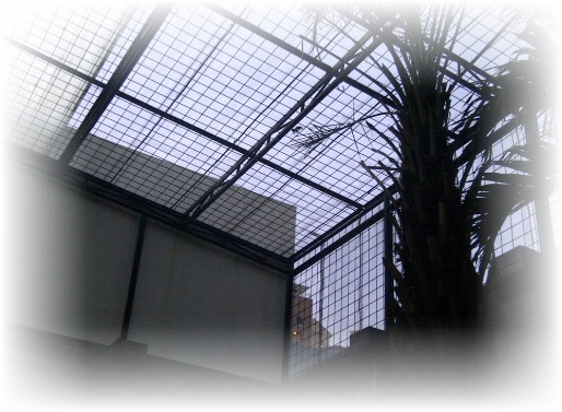 teralis atap rumah