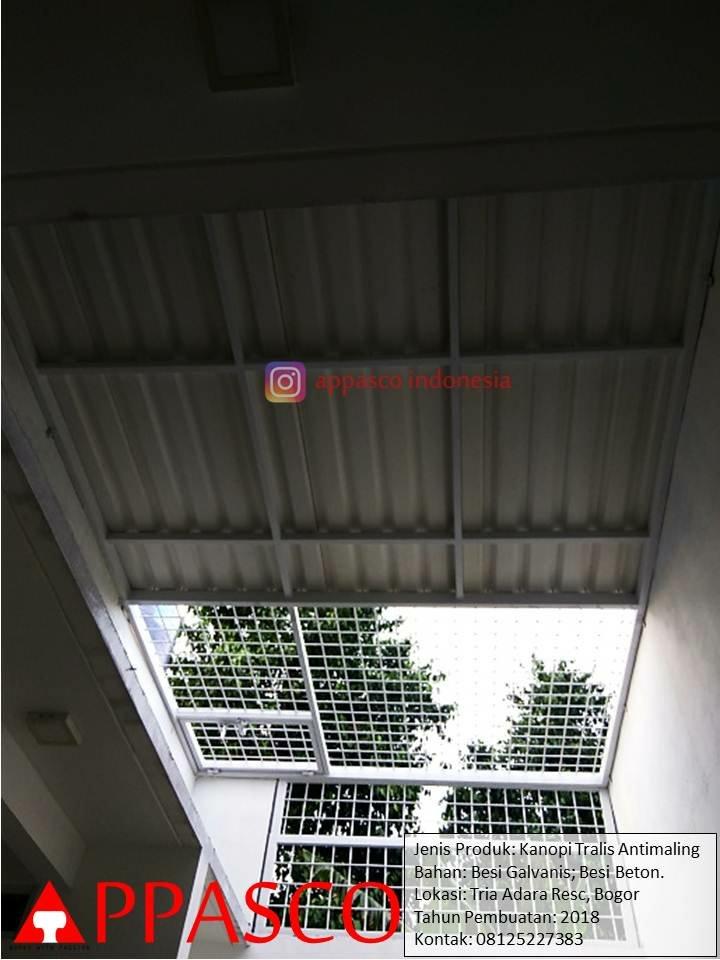 Kanopi Teralis Anti Maling Bagus dan Kuat di Tria Adara Residence Bogor